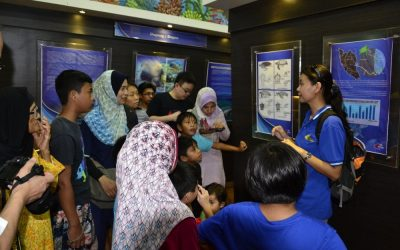 Terrapin conservation gains momentum in Kemaman