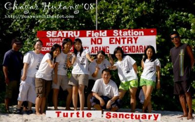 The joys of being a turtle volunteer