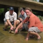 Lonnie, Bill and Rick releasing the adult wild painted terrapin after it was processed